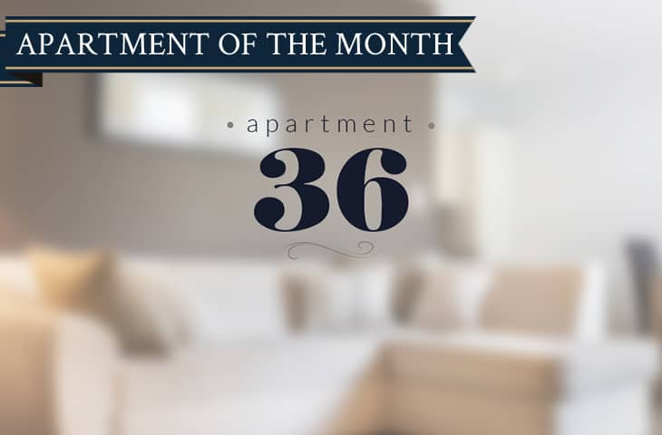 Property of the month - Apartment 36