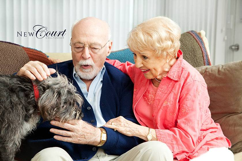 Happy New Court residents with their dog